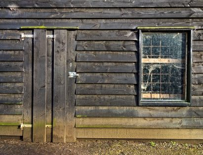 An old, rotting shed